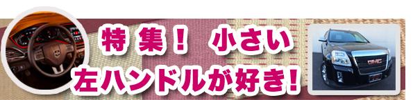 tokusyu-hidari-01