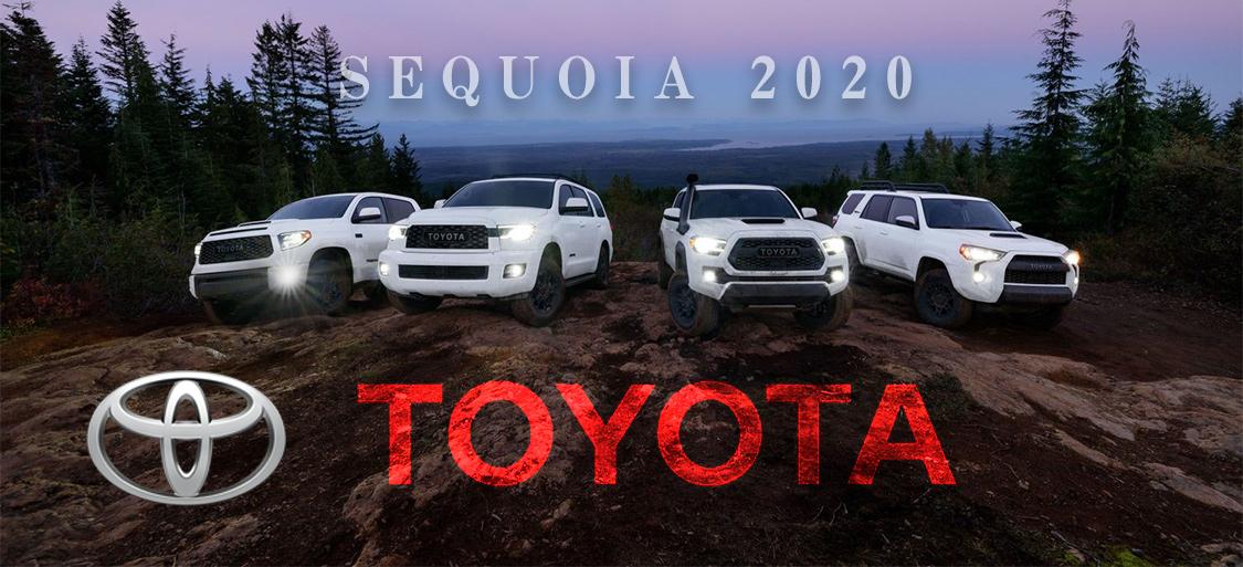 US トヨタ セコイヤTRD PRO 2020 (US TOYOTA Sequoia) 新車